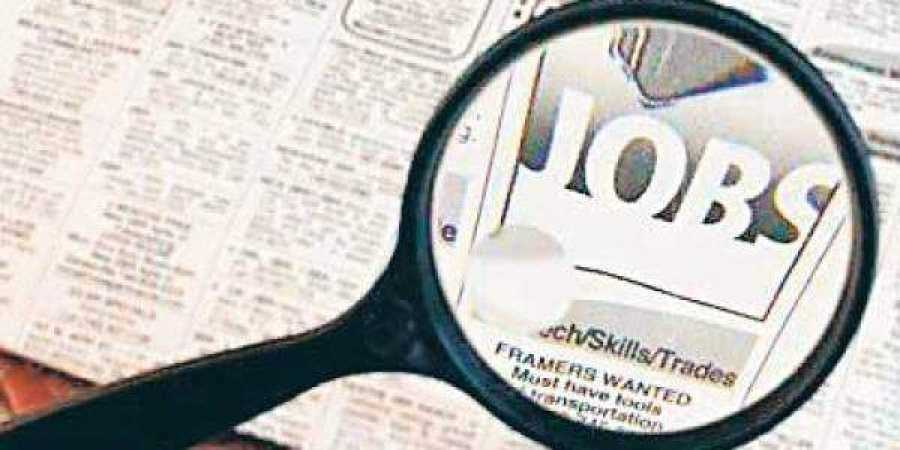 1223-lakh-new-jobs-created-in-september-esic-payroll-data