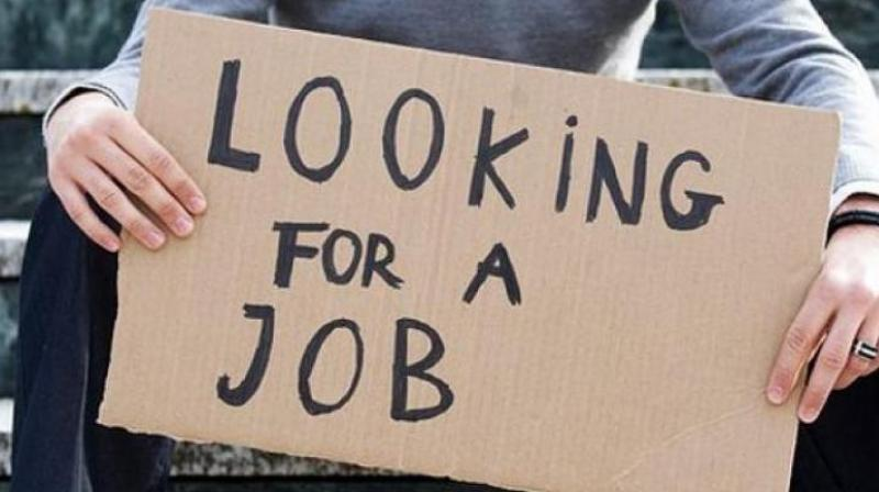 unemployment-rate-highest-in-45-years-shows-centres-buried-report